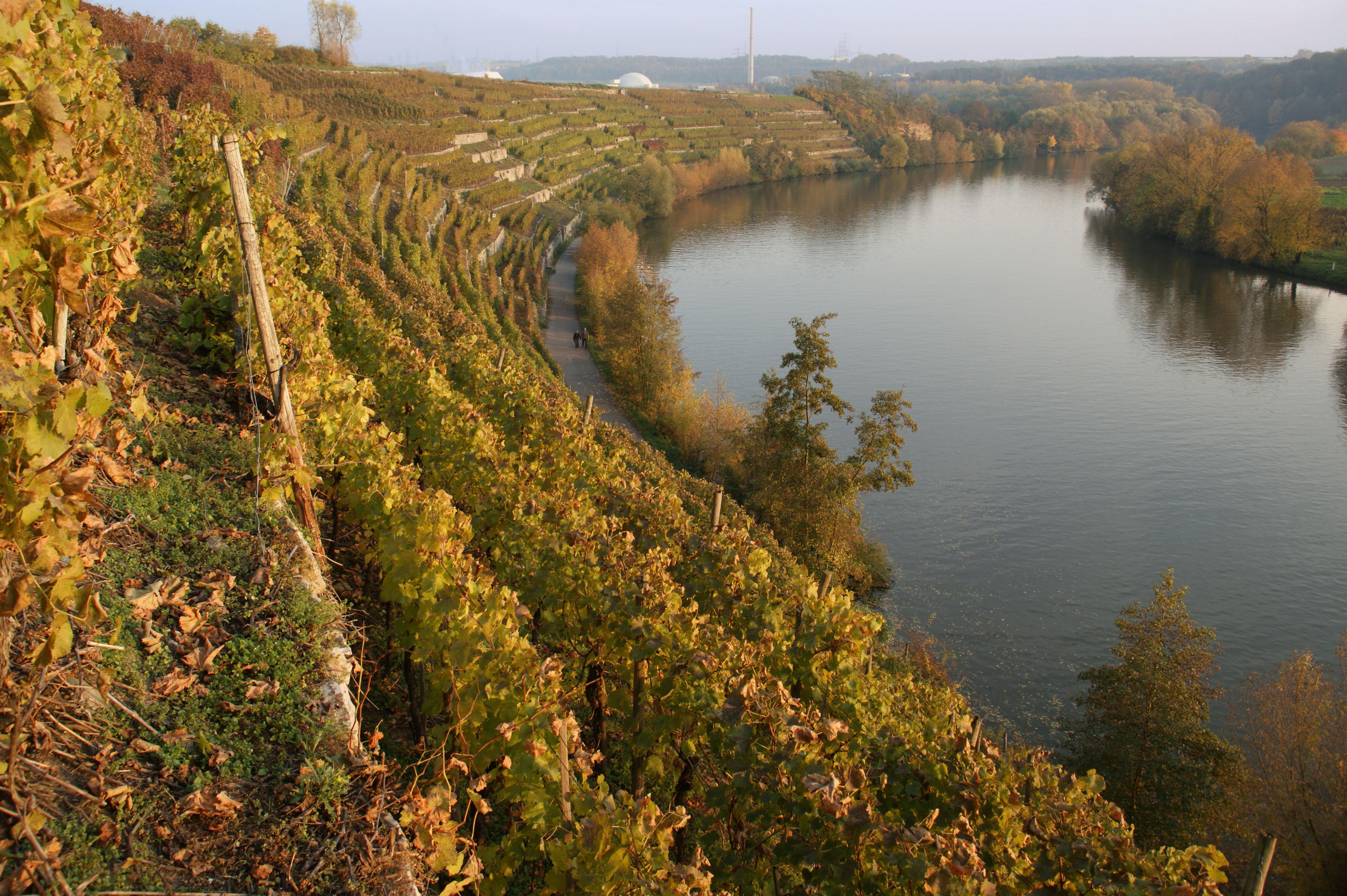 Wg Stromberg Zabergäu Weinausschank